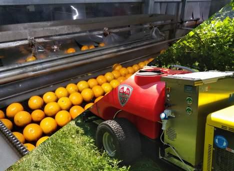 La Comunita' europea riconosce la tecnologia dell'acqua ozonizzata applicata per la difesa biologica delle colture