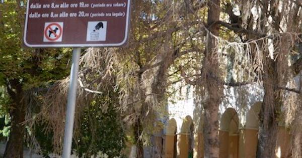 Ludoteca Outdoor al Parco Primo Sport e ai Giardini Pittaluga