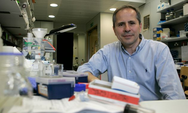 Professor Andrea Crisanti, is seen in his lab at London's Imperial College, London, Wednesday June 11,...