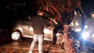 Maltempo, tromba d'aria a Rosignano: feriti e danni