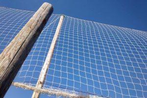 Sport, D'Incecco 'fondi ad associazioni dilettantistiche' – Abruzzo
